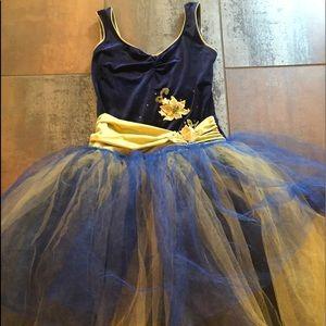 Incredible romantic ballet tutu costume